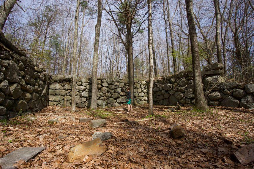 Cohen Woodlands Foundation