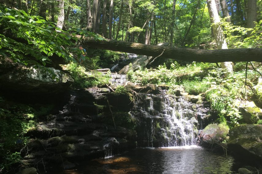Upper Falls at Day Pond