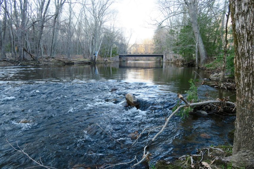 Willimantic River at Merrow Meadow
