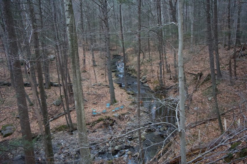 Chapman Pond Private Property