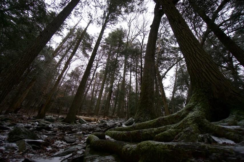 Devil's Hopyard Orange Vista Trail