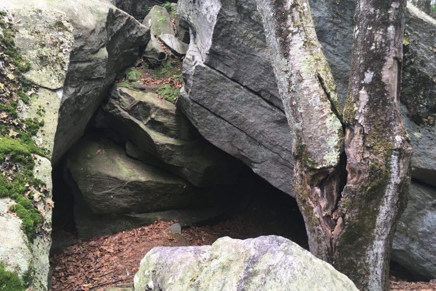 Mono Pond Island Cave