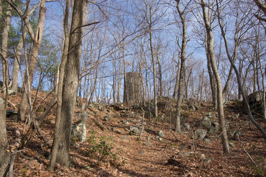 Mount Tom Woods Tower
