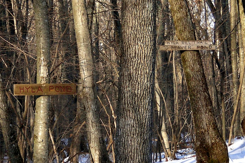 Teale Trail Signs