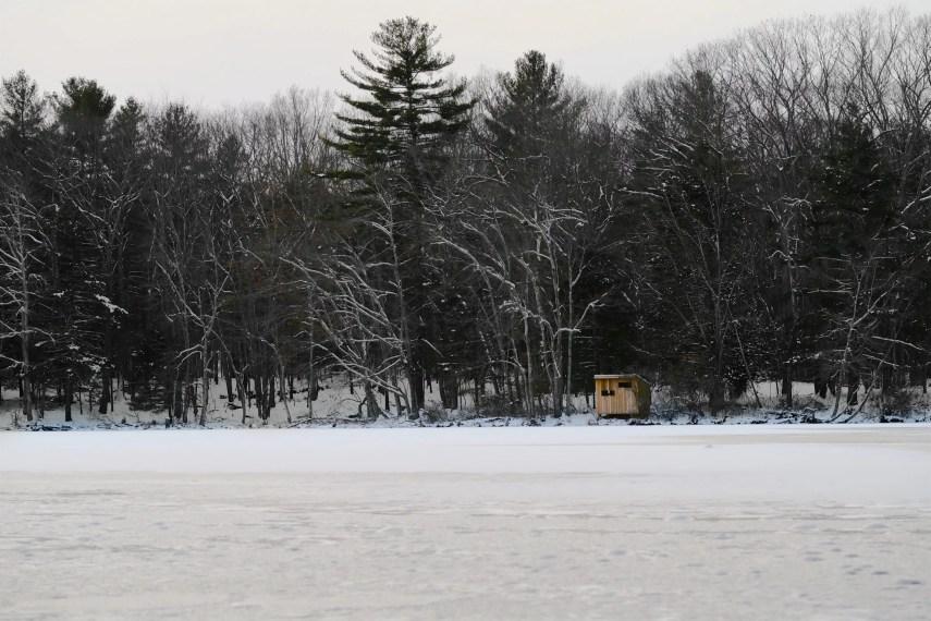 Allanach Wolf Lake Marie Winter