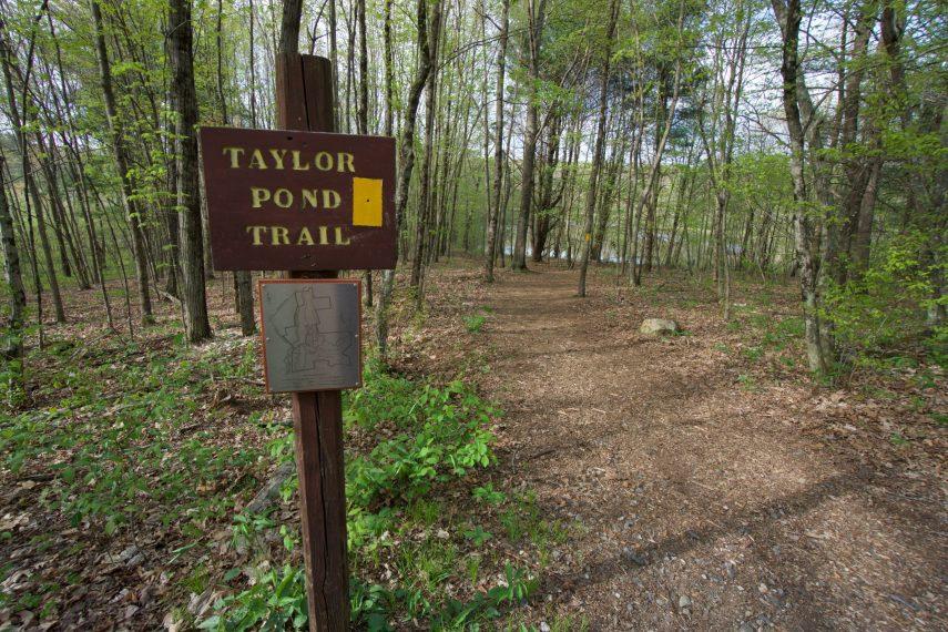 Fenton Ruby Taylor Pond Trial