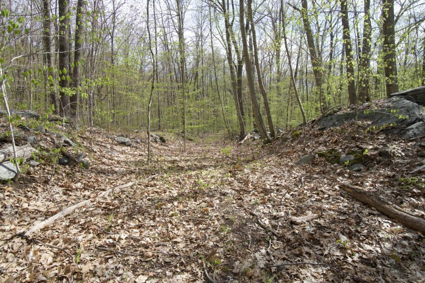 Pomeroy State Park Short Trail