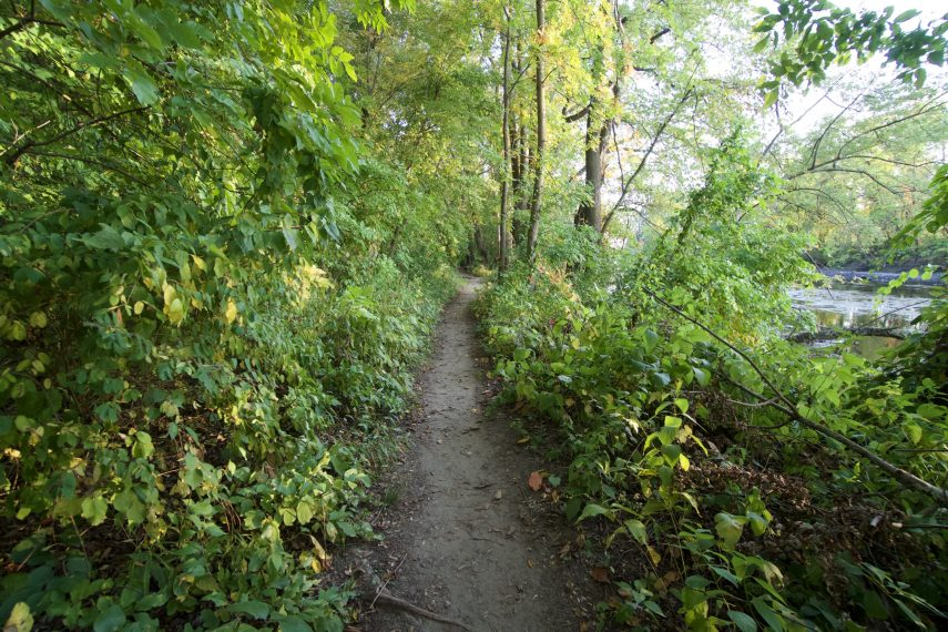 Angelo Sferrazza Park Trail