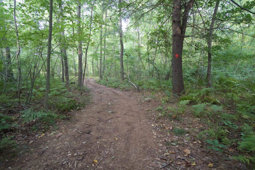 Burnham Tavern Trail