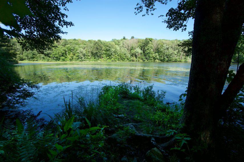 Chase Reservoir