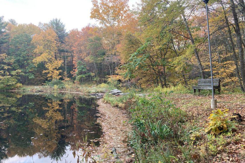 Walker's Resevoir Trail