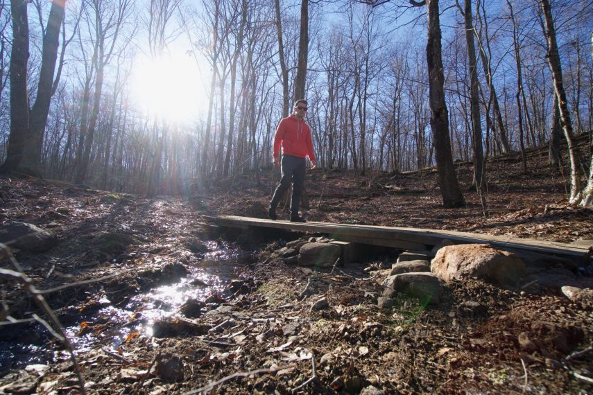 Bulkeley Hill Preserve Red Trail