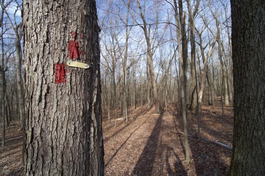Benton Homestead Red Trail
