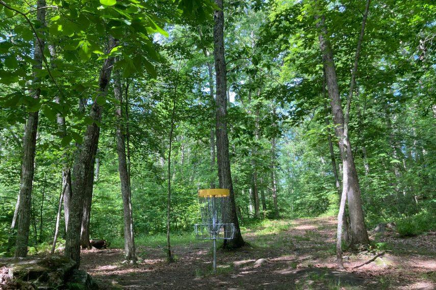 Davis Forest Disc Golf Hole Ten