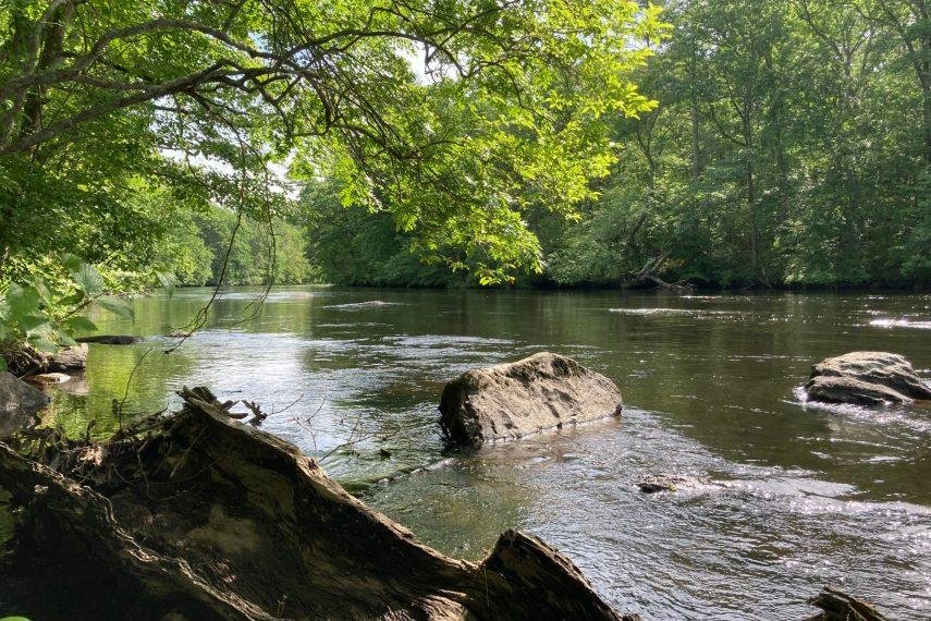 Davis Forest Quinebaug River