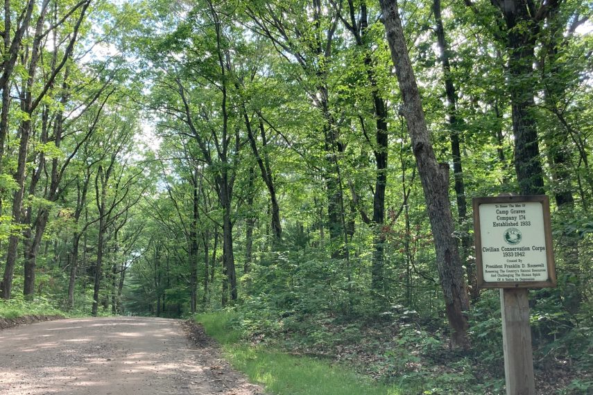 Mountain Laurel Camp Graves
