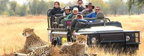 Sabi-Sands-Game-Reserve