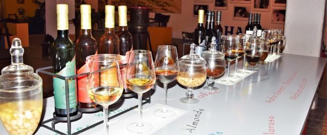 introducción al vino de jerez, el vino mas versátil del mundo