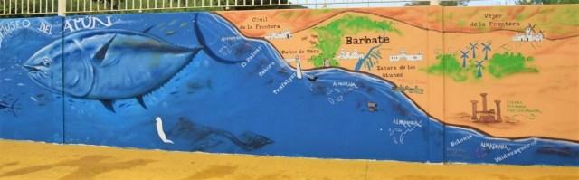 Cadiz Explore la Tierra day tours Barbate Vejer de la Frontera visita atún rojo bluefin tuna tour visit small group custom tour ruta personalizada museo del atun la chanca