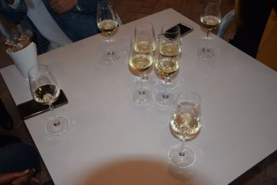 Cata de vinos de jerez fino y pale. Sherry wine tasting Fino and Pale in Jerez de la Frontera