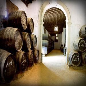 TioPepe solera Jerez de la Frontera Explore la Tierra ultimate sherry tour
