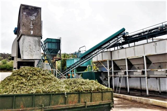 Olive oil private tour Cadiz Olive oil mill in white village Zahara de la Sierra