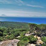 Mirador rutas guiadas senderismo Cádiz parque natural el estrecho Bolonia