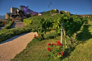 Marqués de Riscal best winery tours in La rioja
