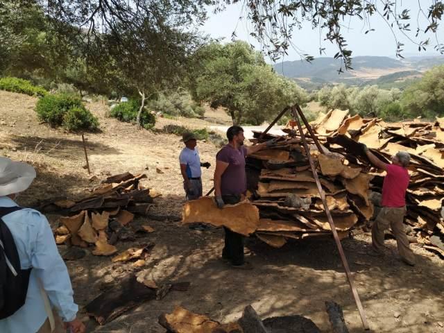 weighting cork extracted in Los Alcornocales in Cadiz province Alcala de los Gazules