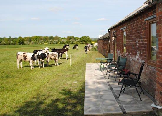 The Fen Stable Fen Farm Lincoln Lincolnshire