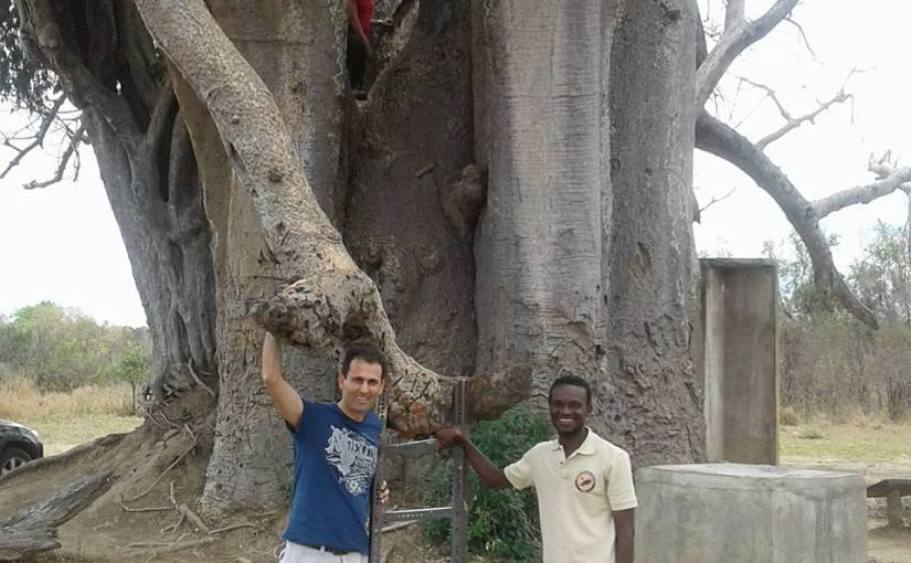Let us talk about the trees: Only in Tanzania