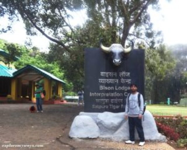 Bison lodge get permit for reserved forest & waterfalls Pachmarhi
