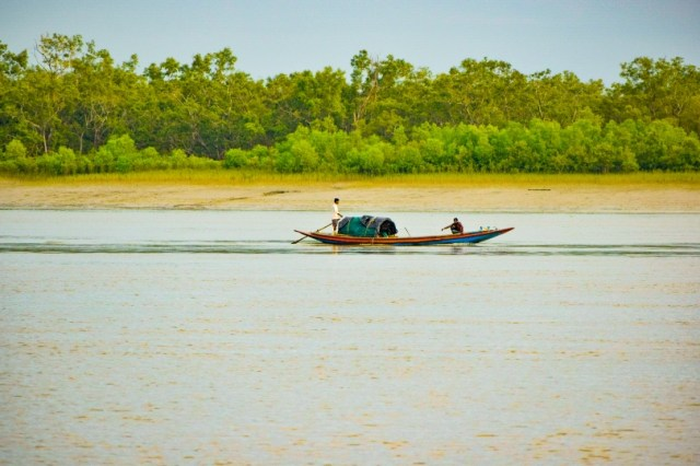 Occupation in Sundarban