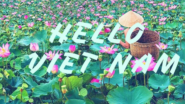 Vietnamese phrases to know for travelers | Education News