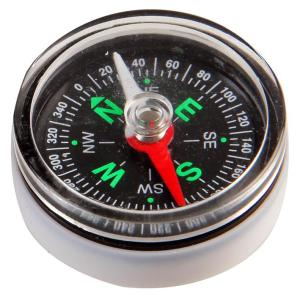 Replacement Compass Module