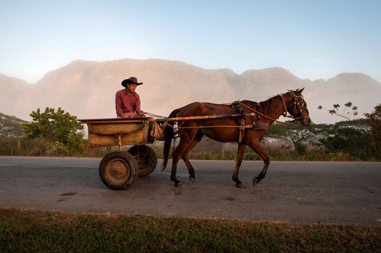 A cowboy rides his horse into Viñales in the early morning.