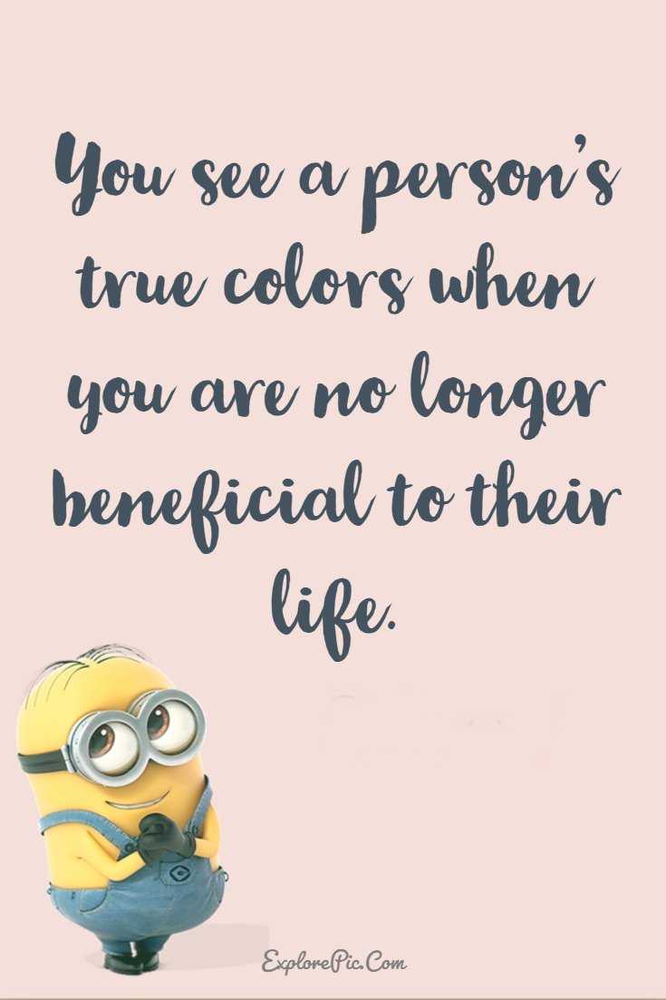 37 Funny Quotes Minions And Funny Words To Say Explorepic