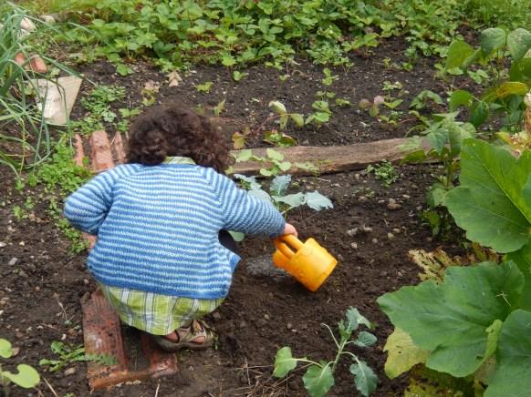 planter semer arroser avec enfants