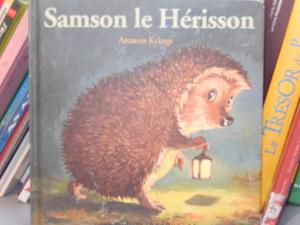 Rentrer doucement dans l'hiver en lecture [Chut, les enfants lisent #1]