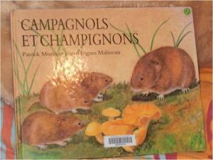 album jeunesse campagnols et champignons