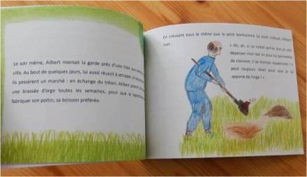 livre pour enfant histoire trésor irlande