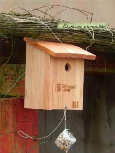 installer un nichoir pour oiseaux