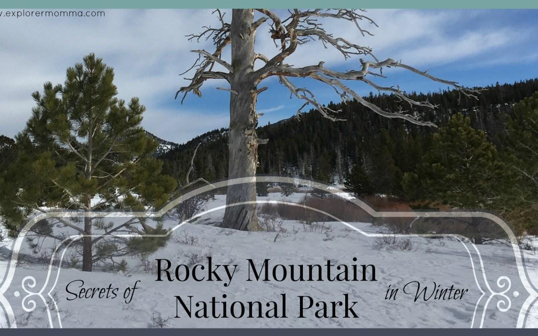 Secrets of Rocky Mountain National Park in Winter