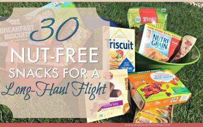 30 Nut-Free Snacks For A Long-Haul Flight
