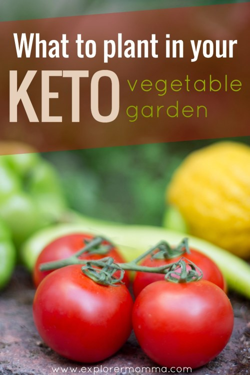 What to plant in a keto vegetable garden? Are you planning a keto garden, what is a ketogenic garden, and are there keto friendly vegetables? Yes! #ketogarden #ketovegetables