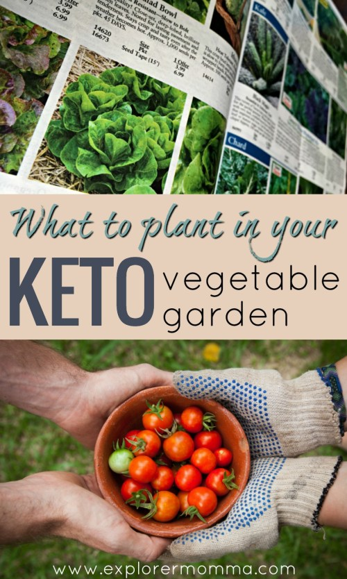 What to plant in your keto vegetable garden. Plan your keto garden for spring and reap the keto friendly vegetables you love! #ketogarden #ketogenicgarden