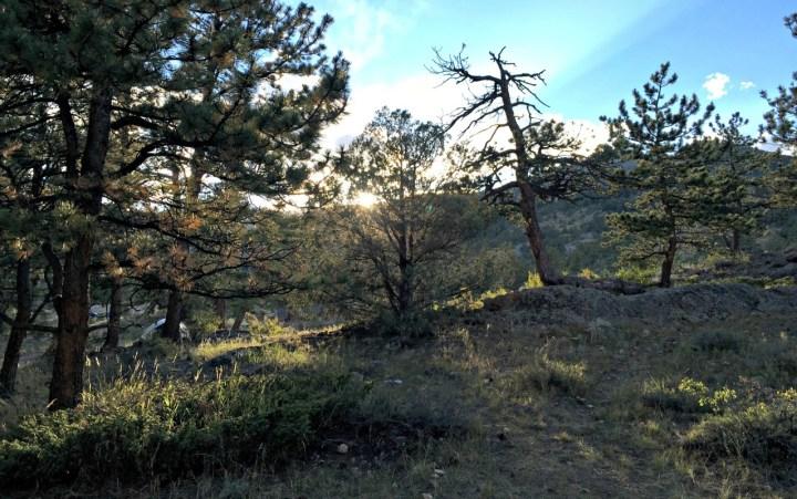 Campsite sunrise view, feature