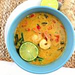 Keto Thai Coconut Soup is dairy-free, gluten-free, low carb, and delicious. #thaisoup #lowcarbdinner