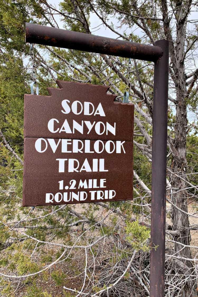Soda Canyon Overlook Trail, Mesa Verde #familytravel #mesaverde