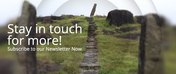 subscribe-newsletter-stay-in-touch